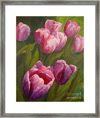 Palette Tulips Framed Print by Phyllis Howard