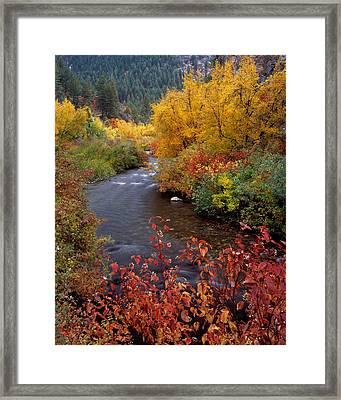 Palisades Creek Canyon Autumn Framed Print by Leland D Howard