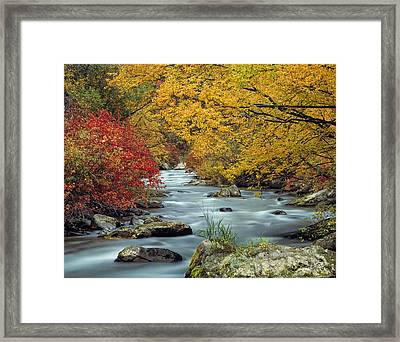 Palisades Creek Framed Print by Leland D Howard