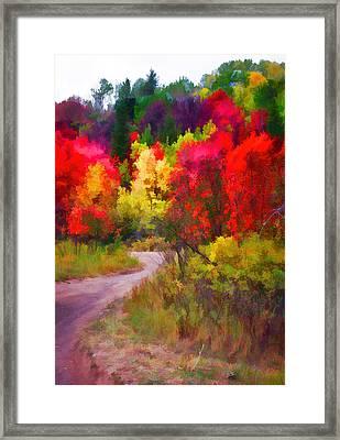 Palisades - Follow The Gravel Road Framed Print