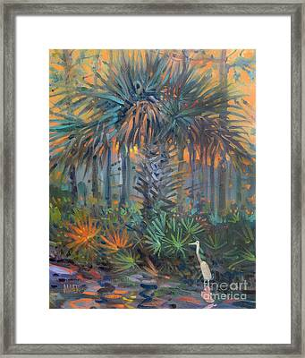 Palm And Egret Framed Print by Donald Maier