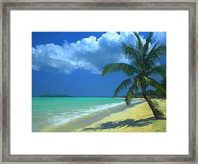 Palm Beach In The Keys Framed Print by David  Van Hulst
