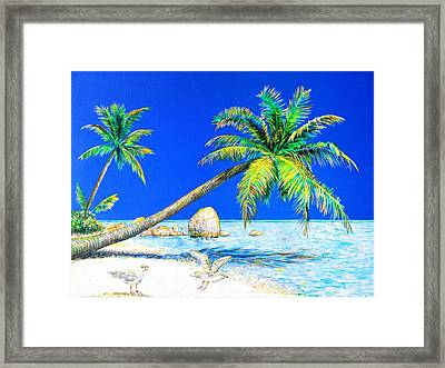 Palm Beach Number Five Framed Print by Daniel House