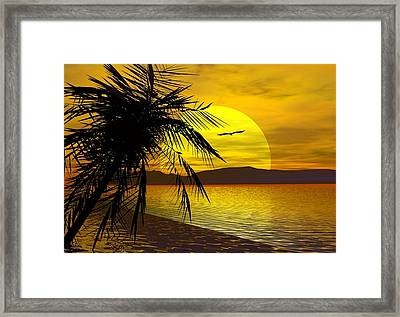 Palm Beach Framed Print by Robert Orinski