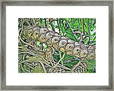 Palm Branch Framed Print by Mindy Newman