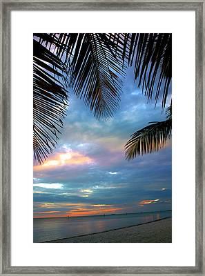 Palm Curtains Framed Print by Susanne Van Hulst