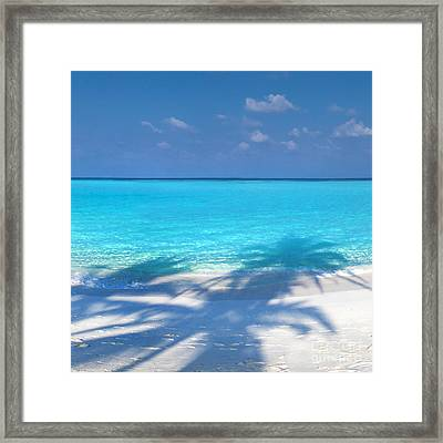 Palm Escape -  Part 2 Of 3 Framed Print by Sean Davey