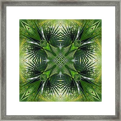 Framed Print featuring the photograph Palm Frond Kaleidoscope by Francesa Miller