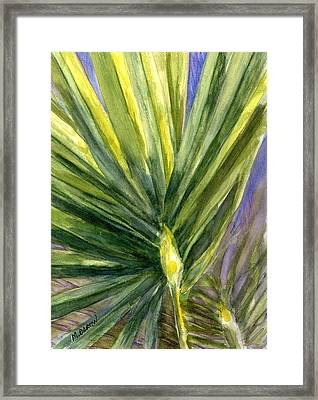 Palm Frond Framed Print by Marilyn Barton
