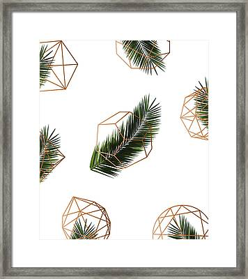 Palm Geometry Framed Print by Uma Gokhale