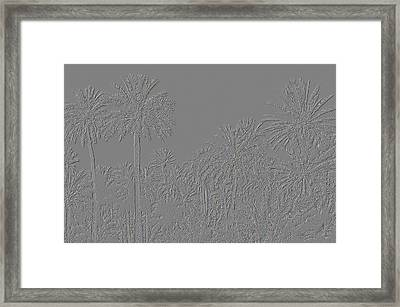 Palm Grove Framed Print