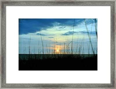 Framed Print featuring the photograph Palm Island by Anthony Baatz