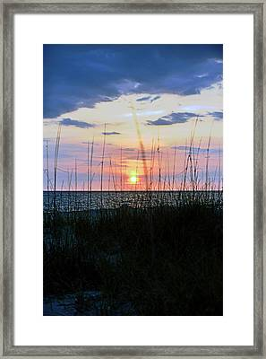 Framed Print featuring the photograph Palm Island II by Anthony Baatz