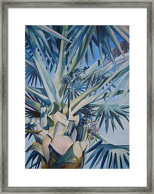 Palm Framed Print by Katherine  Fyall