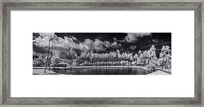 Palm Lagoon Framed Print by Sean Davey