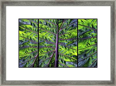 Palm Leaf Panel Framed Print