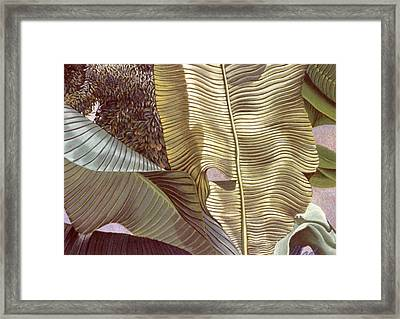 Palm Leaves And Orange Tree Framed Print