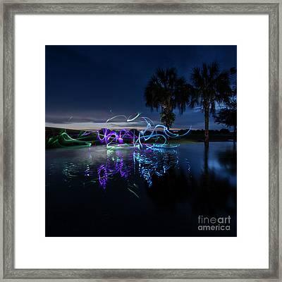Palm Lights Framed Print