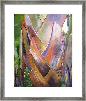 Palm Framed Print by Lisa Boyd
