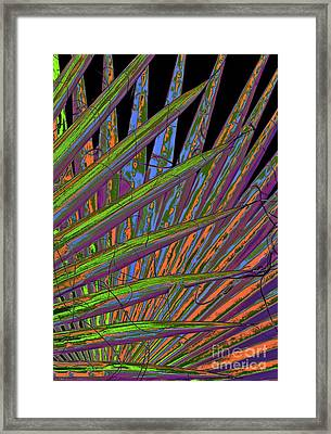 Palm Meanings Framed Print by Gwyn Newcombe