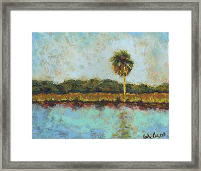 Palm On Spruce Framed Print by Hillary Gross