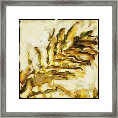 Palm On Wall Framed Print by Paul Tokarski