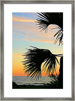 Framed Print featuring the photograph Palm Silhouette by Kristin Elmquist