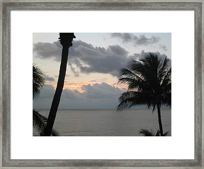 Palm Sunrise Framed Print by Eliot LeBow