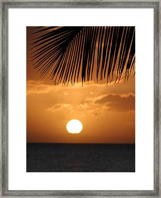 Palm Sunset Hawaii Framed Print by Dustin K Ryan
