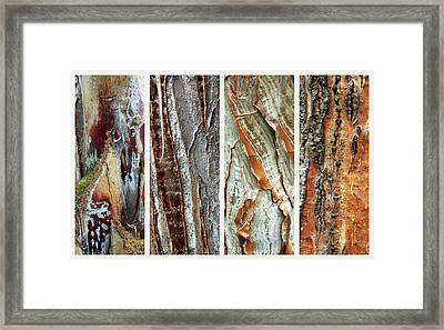 Palm Tree Abstract Framed Print by Jessica Jenney