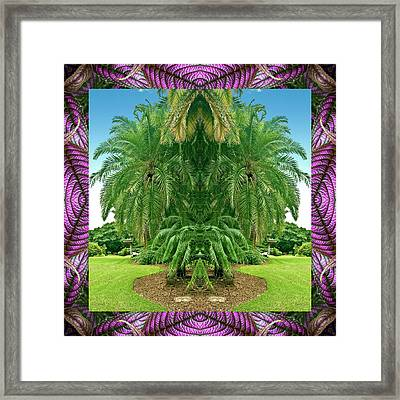 Palm Tree Ally Framed Print by Bell And Todd
