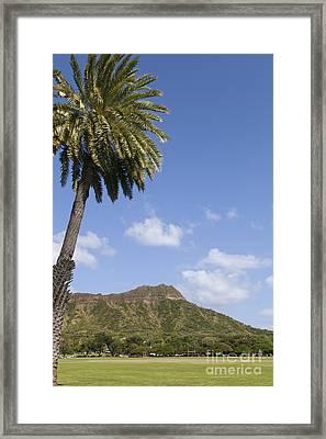 Palm Tree And Diamond Head Framed Print by Brandon Tabiolo