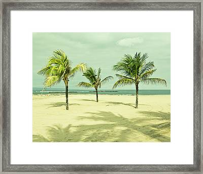 Palm Tree, Bali Framed Print by Photograph by Chris Round