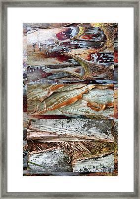 Palm Tree Bark Design Framed Print by Jessica Jenney