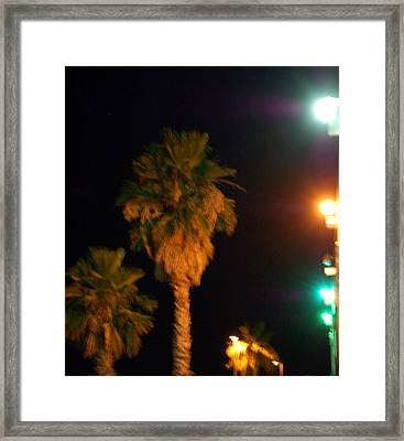 Palm Tree Glow Framed Print by Heather S Huston