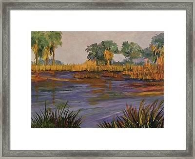 Palm Tree Hideaway  Framed Print