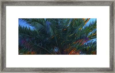 Palm Tree In The Sun Framed Print