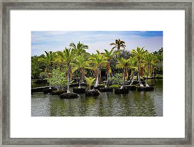 Framed Print featuring the photograph Palm Tree Islands by Pamela Walton