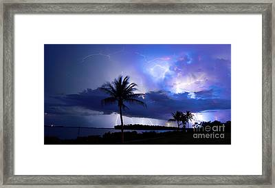 Palm Tree Nights Framed Print