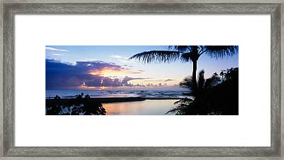Palm Tree On The Beach, Wailua Bay Framed Print by Panoramic Images