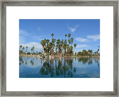 Palm Tree Reflections Framed Print
