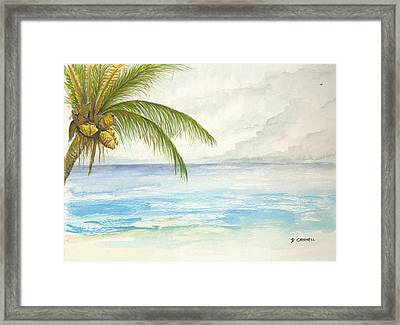 Framed Print featuring the digital art Palm Tree Study by Darren Cannell
