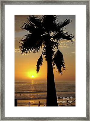 Palm Tree Sunset Framed Print by Jim and Emily Bush