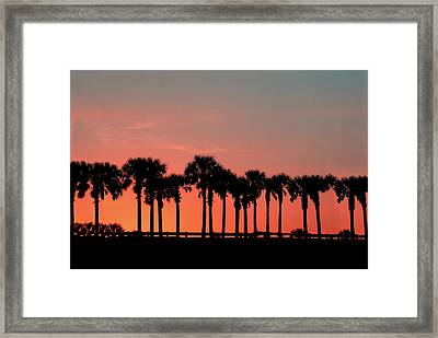 Palm Tree Sunset Framed Print by Joel Witmeyer