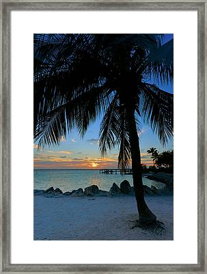 Framed Print featuring the photograph Palm Tree Sunset by Stephen  Vecchiotti
