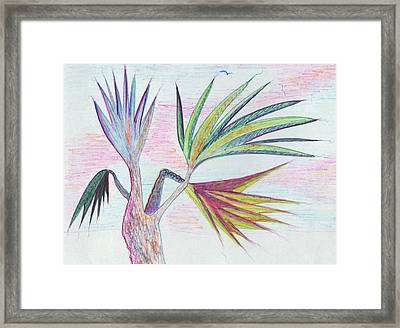 Palm Tree Framed Print by Suzanne  Marie Leclair
