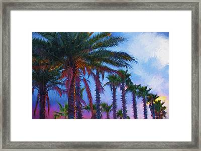 Palm Trees 3 Framed Print