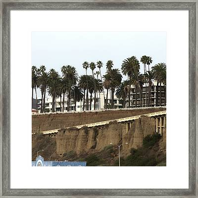 Palm Trees And Apartments Framed Print