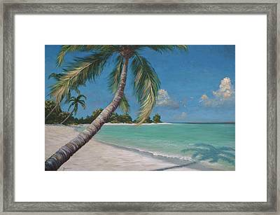 Palm Trees And Beach By Alan Zawacki Framed Print