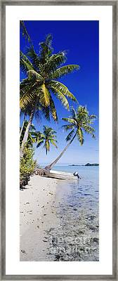 Palm Trees And Motorized Dinghy Framed Print by Jeremy Woodhouse